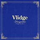 PERSPECTIVE ~VLIDGE THE BEST~/Vlidge