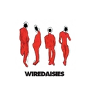Wire Daisies/Wire Daisies