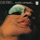 Muitos Carnavais/Caetano Veloso