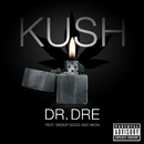 Kush (feat. Snoop Dogg, Akon)/Dr. Dre
