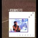 Yi Qi Zou Guo De Ri Zi/Andy Lau