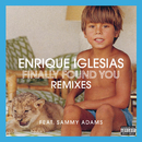 Finally Found You (feat. Sammy Adams)/Enrique Iglesias