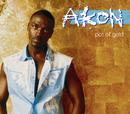 Pot of Gold/Akon