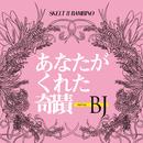 あなたがくれた奇蹟 starring BJ/スケルト・エイト・バンビーノ