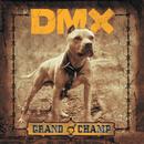 Grand Champ/DMX