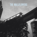 Collected: 1996-2005/The Wallflowers
