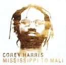Mississippi to Mali/Corey Harris