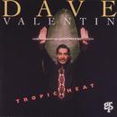 Tropic Heat/Dave Valentin
