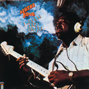 ALBERT KING/I WANNA/Albert King