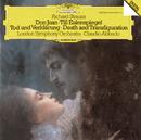 R.シュトラウス:交響詩<ドン・ファン>、<ティル・オイレンシュピーゲルの愉快ないたずら>、<死と変容>/Michael Davis, London Symphony Orchestra, Claudio Abbado