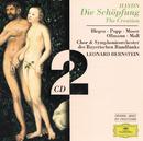 Haydn, J.: The Creation/Symphonieorchester des Bayerischen Rundfunks, Leonard Bernstein