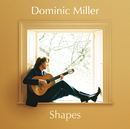 Shapes/Dominic Miller