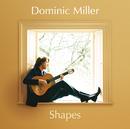 スムース・ギター~シェイプス/Dominic Miller