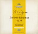Strauss: Sinfonia domestica / Witt: Symphony in C/Franz Konwitschny