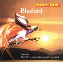 Bluebird/James Last