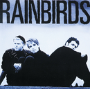 Rainbirds/Rainbirds