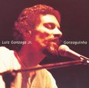 Luiz Gonzaga Jr. (Gonzaguinha)/Gonzaguinha