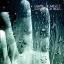 Sometimes It Rains/David Charvet