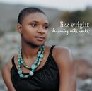 Dreaming Wide Awake (Digital Int'l Version)/Lizz Wright