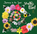Blossoms In The Street (Exclusive Get Cape Remix)/WALLIS BIRD