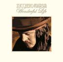 Wonderful Life/Zucchero