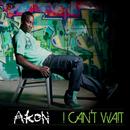 I Can't Wait (UK Radio Edit)/Akon