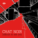 Difficult to see you/Chat Noir