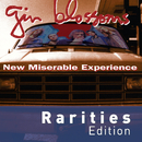 New Miserable Experience (Rarities Edition)/Gin Blossoms
