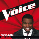Rehab (The Voice Performance)/WADE