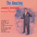 The Amazing James Brown/JAMES BROWN