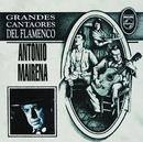Grandes Cantaores Del Flamenco/Antonio Mairena