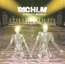 Perfect World/Richi M.