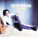 Stellina/Gatto Panceri