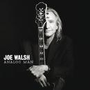Analog Man (Japan Version)/Joe Walsh