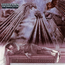 The Royal Scam/Steely Dan