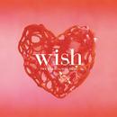 wish/INOUE AKIRA & M.I.H. BAND