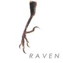 限り無く赤に近い黒 (初回限定盤)/RAVEN