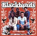 Lovebyrds (Smooth And Easy)/Blackbyrds