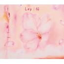 桜/Ley