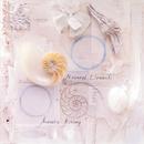 Natural Elements/Acoustic Alchemy