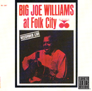 At Folk City/Big Joe Williams