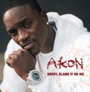 Sorry, Blame It On Me/Akon