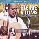 The Sonet Blues Story/Big Joe Williams