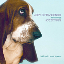 Falling In Love Again/Joey DeFrancesco, Joe Doggs
