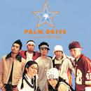 パーティ・チューン/PALM DRIVE