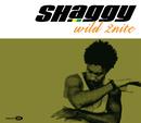 Wild 2nite (International Version)/Shaggy