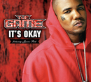 It's Okay (International Version (Explicit)) (feat. Junior Reid)/The Game