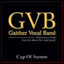 Cup Of Sorrow (Performance Tracks)/Gaither Vocal Band