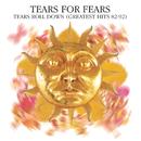 Tears Roll Down (Greatest Hits 82-92)/Tears For Fears