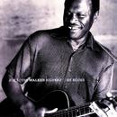 Silvertone Blues/Joe Louis Walker